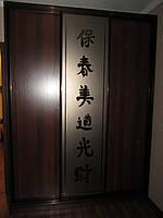 Шкафы-купе на заказ Z-60