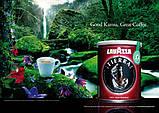 Кава мелена оригінальний з Італії Lavazza Tierra ж/б 250 р., фото 4