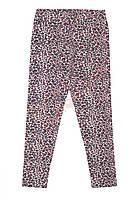 """Лосины для девочки """"Леопардовый принт"""" """"Wanex"""", бежевый, 134(122-152), 134 см"""