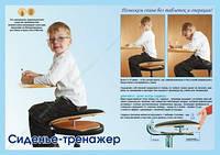 """Сиденье тренажер """"Сидушка 3D"""" Арго для детей, подростков (искривление позвоночника, укрепление мышц)"""