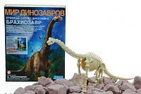 Игровые наборы раскопки. Брахиозавр. 4М