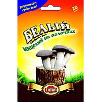 Белый степной мицелий грибов Futar 20 шт