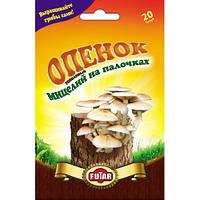 Опенок тополиный мицелий грибов Futar 20 шт