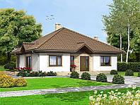 Проект одноэтажного дома hd-241