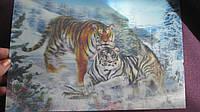 Подложка на стол, картинка 3D, пластик,35 х 24 см. волки+тигры