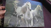 Подложка на стол, картинка 3D, пластик,35 х 24 см. лошади