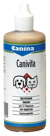 Canina Canivita 100 мл. витаминно-минеральный тоник для собак при стрессовых ситуациях., фото 2