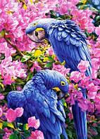 """Картина для рисования камнями Diamond painting Алмазная вышивка """"Синие попугаи Рио"""" полная выкладка, фото 1"""