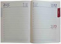 Ежедневник недатированный А4 В92/1 белая бумага
