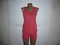 Хлопковая пижама майка и шорты новая в наличии Украина 44-46-48-50
