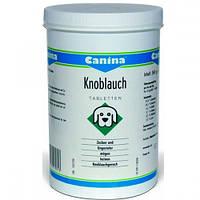 Canina Knoblauch пищевая добавка для улучшения аппетита собаки и общего обмена веществ в организме с чесноком.