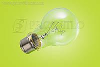 Лампа СГА 220-100 спецлампа
