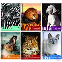 """Блокнот """"Wild Spirit"""", А6, обложка - картон з поролоном, полноцветная ламинированная (CF21201-02 (кошка) x 116424)"""