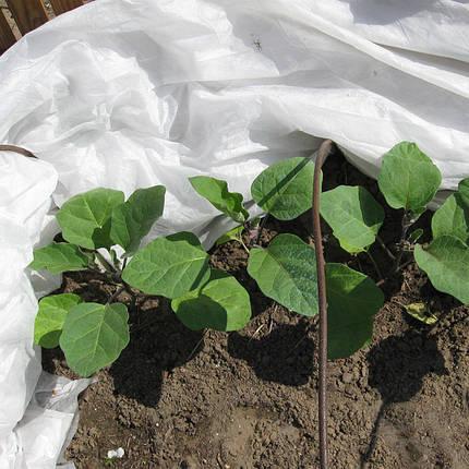 Агроволокно AgroVinn (Польша) 30 (15,8x100м), фото 2