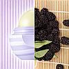 Бальзам для губ EOS Blackberry Nectar (ежевика) 7 г, фото 3