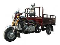 Musstang трицикл грузовой MT200-4V 200 см3 (грузовой мотороллер,муравей)