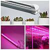 Светодиодный фитосветильник для растений Т8 9W 48LED 60 см