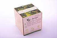 Набор для выращивания декоративных растений Экокуб Туя