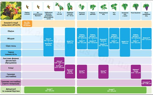 Схема защиты растений