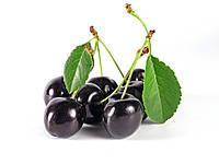 Ароматизатор Black Cherry(Черная вишня), TPA/TFA ТПА, USA