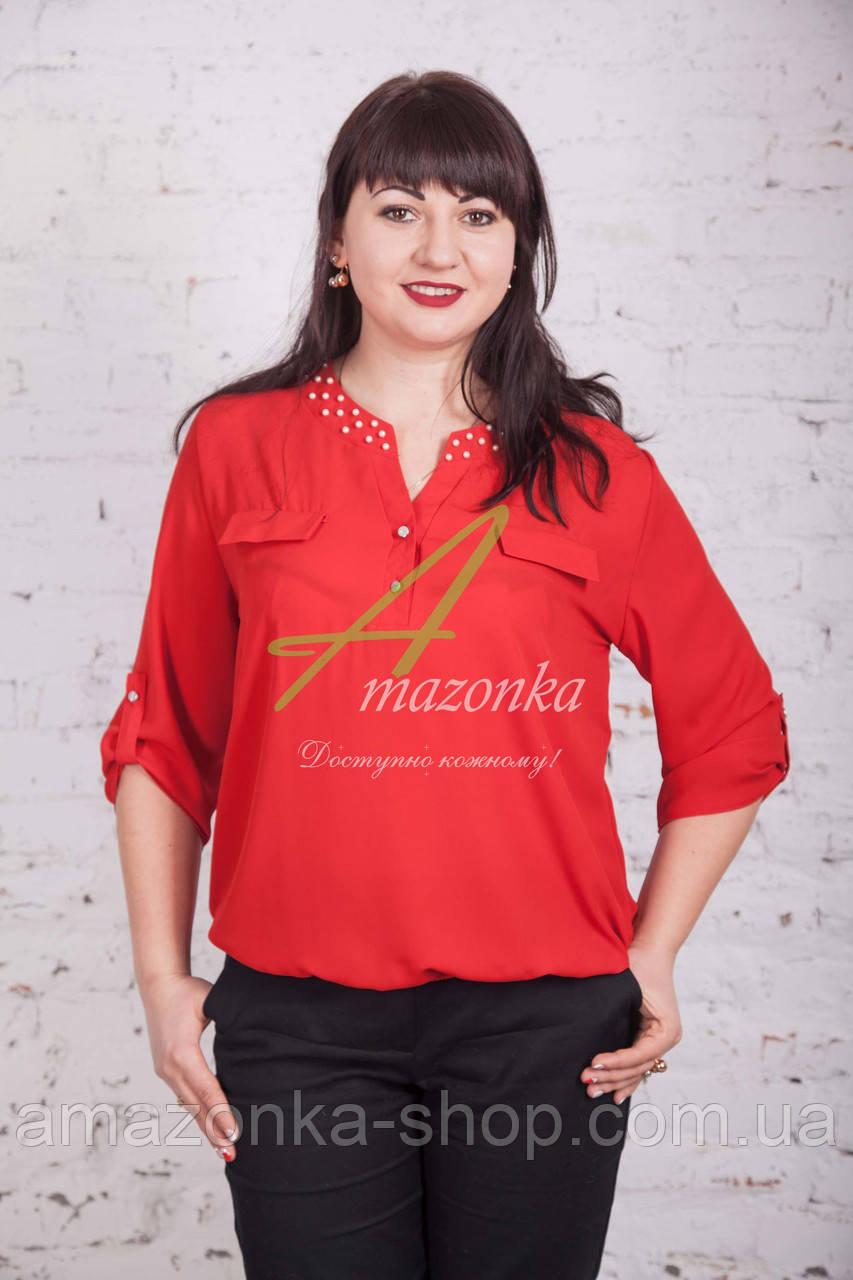 Женская блуза с бусинками от АМАЗОНКА 2017 - (код бл-201)
