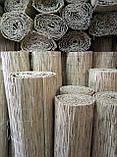 Камышовая рогожка, размер 1,6 х 6 м, фото 9
