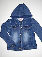 Курточка с имитацией джинсы для девочек Seagull оптом ,6-16 лет.