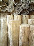 Камышовая рогожка, размер 1,8 х 6 м, фото 8