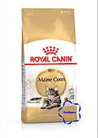 Royal Canin сухий корм для кошенят породи  мейн-кун до 15 місяців. 4 кг