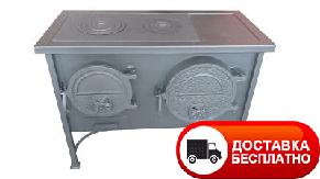 Печь-плита ЭКТОР с духовкой отопительно-варочная МЧП ВИТ, фото 2