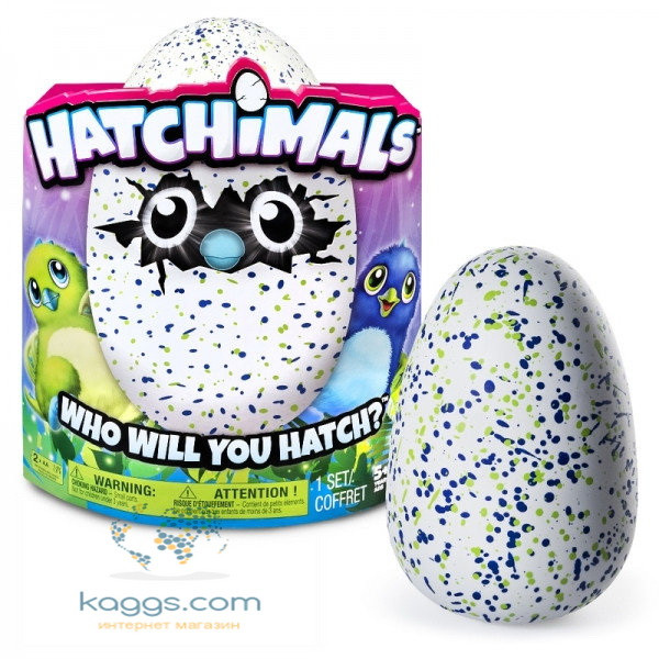 Hatchimals: Драко в яйце # 1 SM19100/6028895  Hatchimals