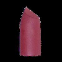 Матовая увлажняющая помада для губ Alex Horse AL-351 №33