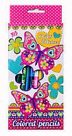 Карандаши двухцветные 12/24 Butterfly 1 Вересня 290358