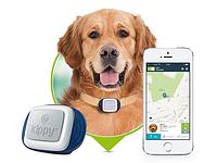 GPS Трекер для собак и кошек TK STAR (TK909)
