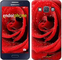 "Чехол на Samsung Galaxy A3 A300H Красная роза ""529c-72"""