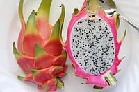 Ароматизатор Dragonfruit Flavor (TPA/ТПА) – Питайя