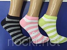 Шкарпетки жіночі бавовна укорочені смужка Шугуан