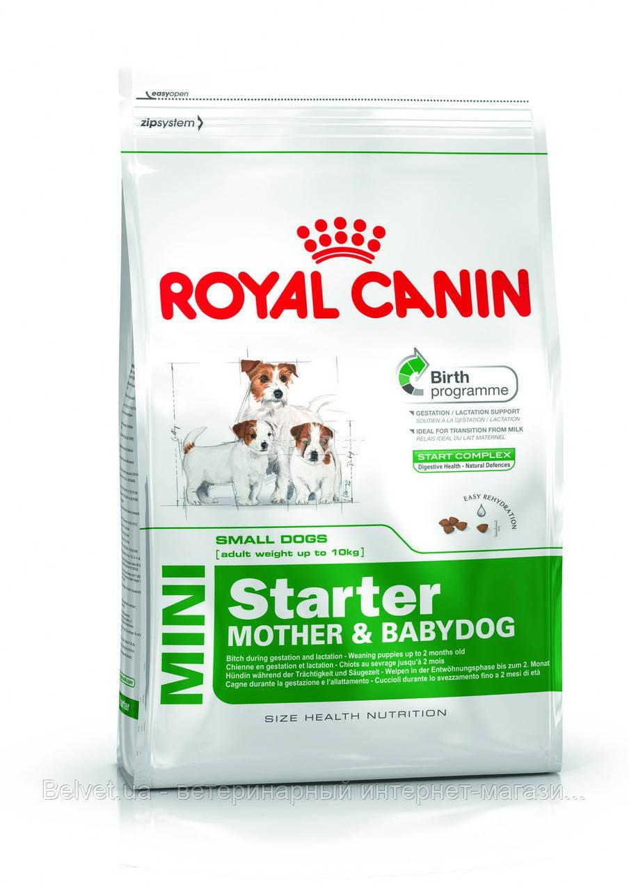 Royal Canin Mini Starter (щенки до 2 месяцев, беременные и кормящие суки) 1 кг