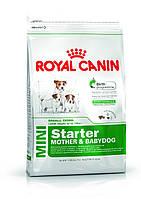 Royal Canin Mini Starter (щенки до 2 месяцев, беременные и кормящие суки) 1 кг, фото 1