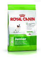 Royal Canin X-SMALL JUNIOR 1,5 кг , фото 1