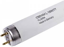 Лампа люмінесцентна Osram L18W/77 G13 Fluora