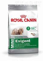 Royal Canin Mini Exigent для привередливых к еде, корм для собак мелких пород от 10 месяцев, 2 кг