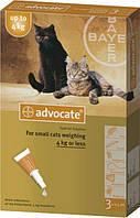 Bayer Advocate капли от блох и клещей, для лечения блошиного дерматита у котов и кошек весом до 4 кг.Упаковка