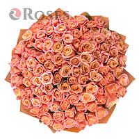 Мисс Пигги 101 оранжевая роза