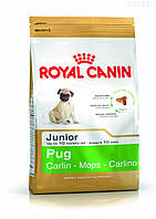 Royal Canin PUG JUNIOR 1,5 кг, корм для щенков мопса до 10 месяцев