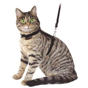 Шлейки и поводки для кошек