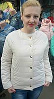 Стильная женская куртка (42-48), доставка по Украине
