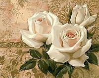 Картины по номерам 40×50 см. Кремовые розы