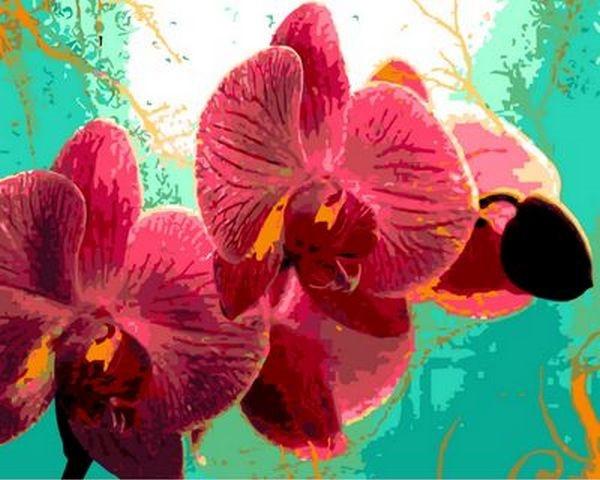 Картины по номерам 40×50 см. Тропическая орхидея