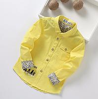 Стильна, яскрава сорочка для хлопчиків